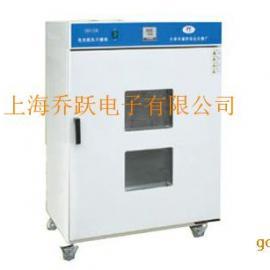 肇庆电热鼓风干燥箱 智能型电热鼓风干燥箱