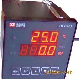 在线氧表/工业溶解氧仪/在线氧分析仪表