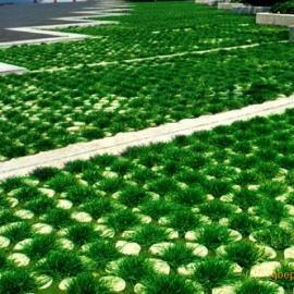 超级植草地坪