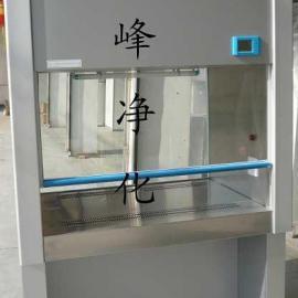 医用生物安全柜 单人安全柜BHC1300IIA/B2