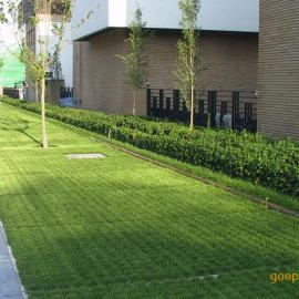 植草地坪/超级植草地坪施工工艺