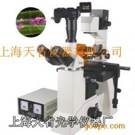 高性能荧光显微镜
