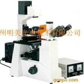 MF51荧光倒置显微镜