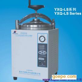 YXQ-LS-30白口铁立式高压抗菌器