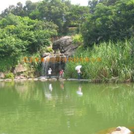 海南景观水处理工程