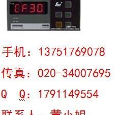 SWP-F901-02-23-N数字显示仪