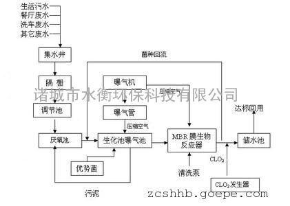 循环泵工作原理图解