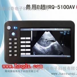 动物B超妊娠诊断仪价格