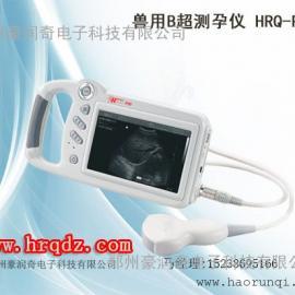 大型进口母猪测孕仪价格