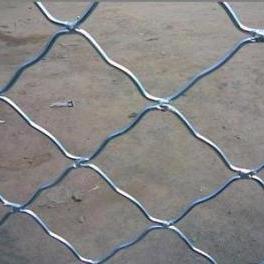 廊坊镀锌铁丝焊接美格网/经销门窗防护网/厂房镀锌铁丝围栏