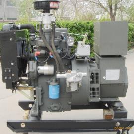 小型沼气发电机