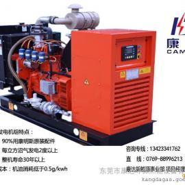 30千瓦沼气发电机组/大品牌沼气机