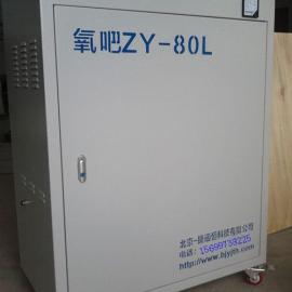 北京氧吧制氧机 KTV制氧机 棋牌室制氧机 厂家直销