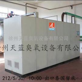 2公斤大型臭氧发生器厂家直销