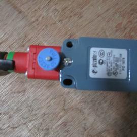 FG60AD1D0A意大利PIZZATO安全开关 电磁锁