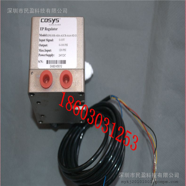 COSYS定位器 EPR100B-ABA-AGCB-AAA-HD-D