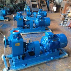 温州自吸式排污泵生产厂家-温州自吸式排污泵质量最好厂家