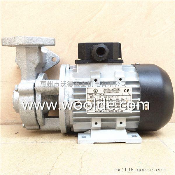 TECOTA YS-15B 热油泵 高温循环泵 模温机泵浦