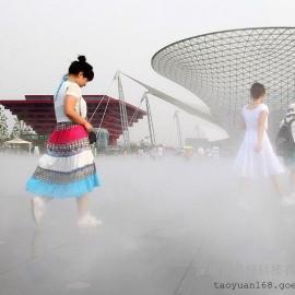 草坪人造雾景观造雾机