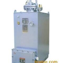 东莞蕊鑫供液化气汽化器,煤气气化炉