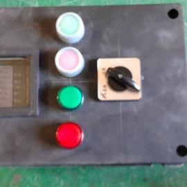 FZC-B1D2A2防水防尘防腐操作柱