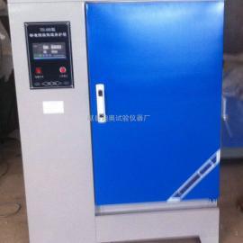 养护箱SHBY-40B混凝土养护箱