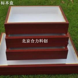 标本盒 昆虫标本制作工具 植物标本储存 北京厂家现货促销