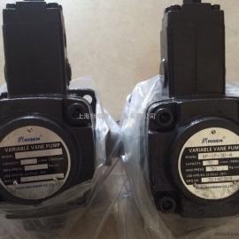 台湾RISEN液压电机  RISEN油泵 VE1-40F-A3