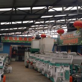 规模最大颗粒机设备厂家 北京全自动颗粒机 专业的颗粒机技术