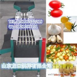 小西红柿分选机圣女果选果机(皮带直径分级)
