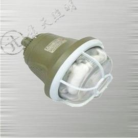 GB8050防爆无极灯