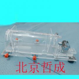 大鼠固定器、平板大鼠实验固定装置、腹腔实验固定器现货