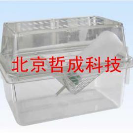 全透明带过滤帽笼/透明大小鼠笼