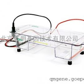 bio-rad Sub-Cell® GT Cell 水平电泳槽