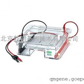 bio-rad Sub-Cell® Model 96 Cell 水平电泳槽
