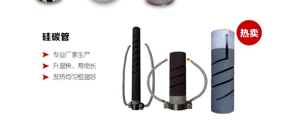 5E-8S/AII测硫仪硅碳管