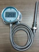 软管数显温度计