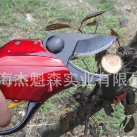 电动剪刀、专业柚子树剪、SCA2型电动树枝剪