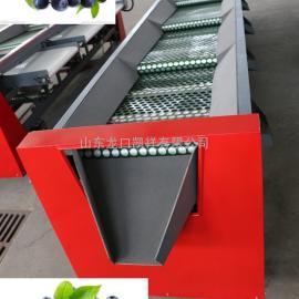 首推山东烟台品牌蓝莓选果机农机推广销售