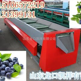 蓝莓分选包装机,无损伤蓝莓筛选筛分机械