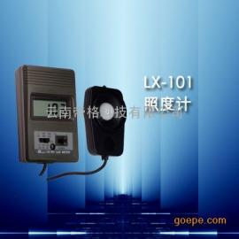 LX-101型白光照度计