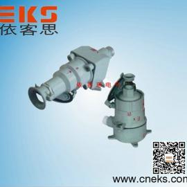 BCX53-30X斜插式防爆插销1P+N+PE