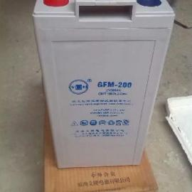 大连有利蓄电池GFM-200规格2v200