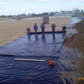 供应三门峡莲菜池防水布