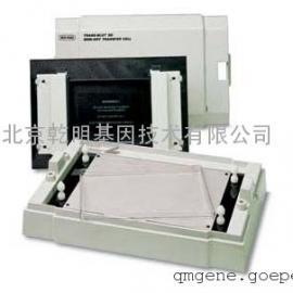 bio-rad Trans-Blot® 半干转印系统转印槽