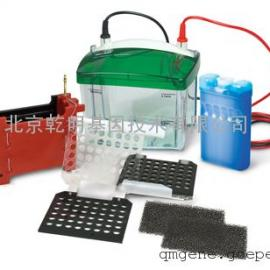 bio-rad 小型 Mini Trans-Blot® 转印槽