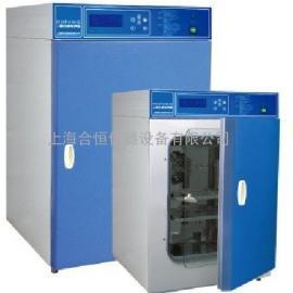 上海电热恒温培养箱 DHP-9272