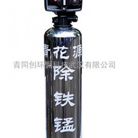2吨农村乡镇县城地下水除铁除锰过滤净化器