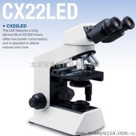 CX22奥林巴斯荧光显微镜