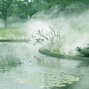 湖泊造雾,公园